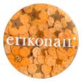 erikonail ジュエリーコレクション ERI-157 ドライフラワー オレンジ 20枚
