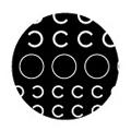 SHAREYDVA ネイルシール ロゴタイプ C ホワイト