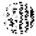 TSUMEKIRA デジタルライン モノクロ NM-DTL-101