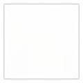 ピカエース 着色顔料 #700 スノーホワイト 2g