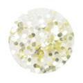 BEAUTY NAILER 純銀グリッター SGP-13 ホワイトゴールド 1mm /2g