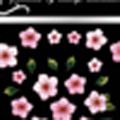 Re-cue ネイルシール FLA-1 /5枚花 ピンク