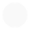 Fleurir カラーパウダー WH-M ホワイト 4g