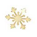 Jewelry-Nail LittlePretty LP-0038 スノークリスタルSS ゴールド