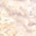 ピカエース シェルグレイン #341 ホワイトS 1g