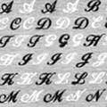 BN アルファベットネイルシール NPA-02 ホワイト&ブラック