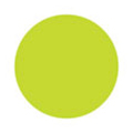 Fleurir カラーパウダー LG-M ライトグリーン 4g