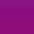 AIRTEX エアブラシボディーペイント BP14 (30mL)