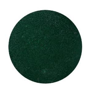 SPACE NAIL スペースキャスト ポリマー フレンチ ダークグリーン 20g