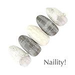 Naility! ジェルネイルカラー 022 クリアホロシルバー 4g